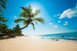 Bãi Dài là một trong tám bãi biển hoang sơ đẹp nhất hành tinh