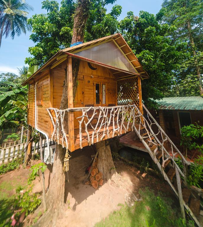 Thiết kế nhà trên cây độc đáo và hấp dẫn tại Sen Lodge Village & Bungalow