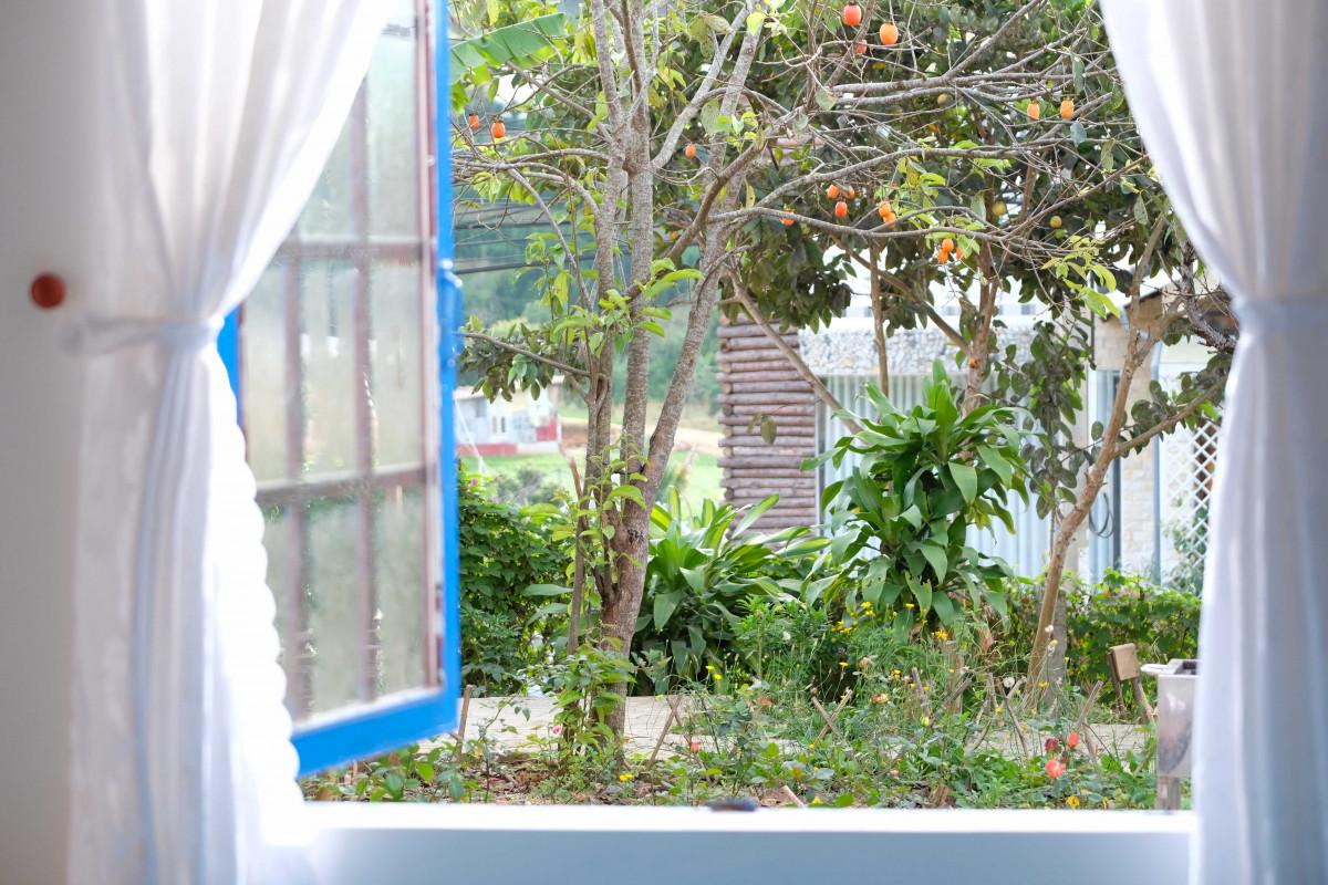 Farmer-Home-homestay-da-lat-cho-gia-dinh-1.jpg
