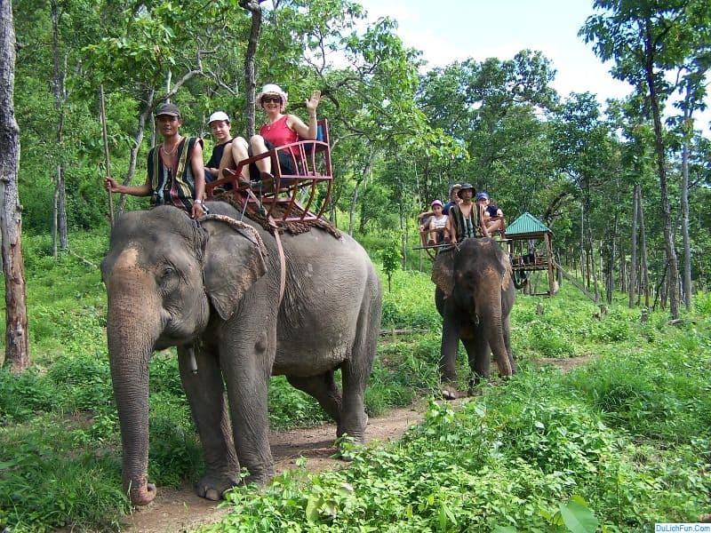 Du khách tham quan vườn quốc gia Yok Đôn