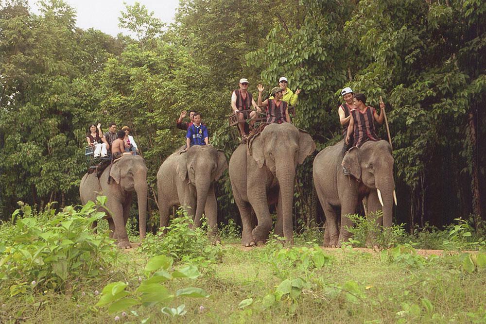 Du khách cưỡi voi đi tham quan Vườn Quốc gia