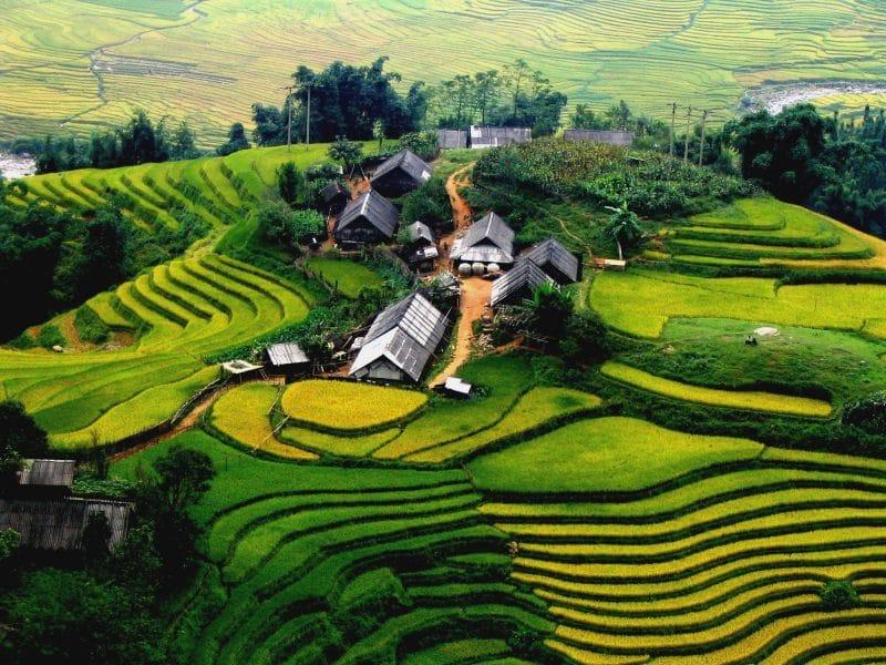 Toàn cảnh Eco Hills Homestay- Du lịch Lào Cai